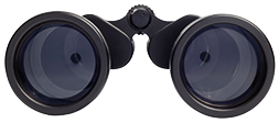 Small binocular